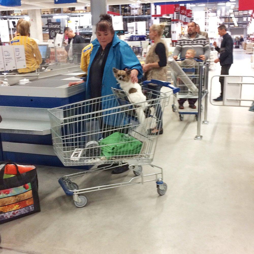 supermarketladies