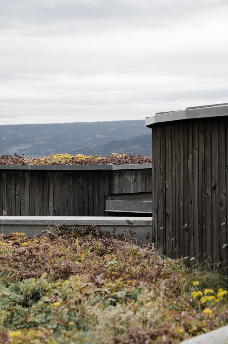 06056_Søre,Ål (7 of 7).jpg