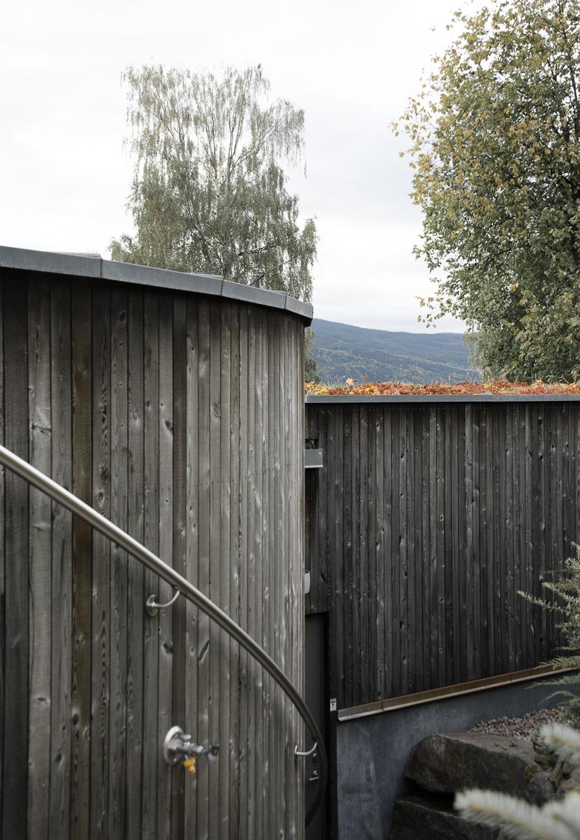 06056_Søre,Ål (6 of 7).jpg