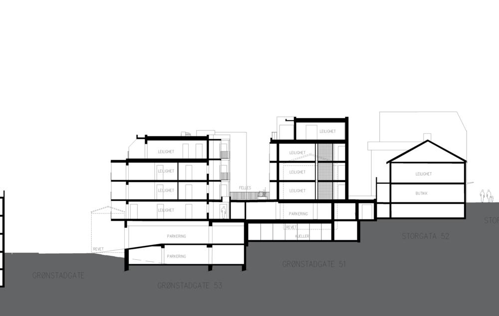 17013 Situasjonsplan - Section - konsept-Model.png