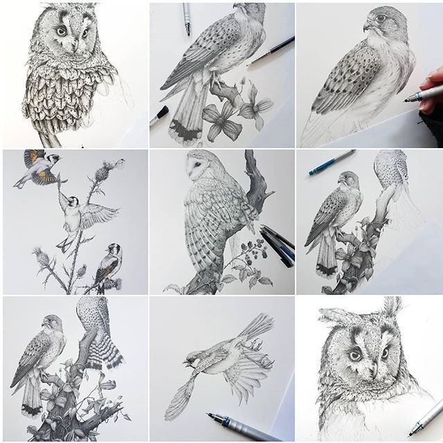 Going by my best nine for 2018, it seems you guys love birds of prey as much as I do! That long earred owl is still on going even though I wanted him finished by the end of November! 🙄 ⠀⠀⠀⠀⠀⠀⠀⠀⠀ There are definitely going to be more birds of prey next year plus some more exotics! I have a good feeling about 2019! ⠀⠀⠀⠀⠀⠀⠀⠀⠀ Happy New Year! I hope it's a good one for all of you 😘🤞🏻 ⠀⠀⠀⠀⠀⠀⠀⠀⠀ ⠀⠀⠀⠀⠀⠀⠀⠀⠀ ⠀⠀⠀⠀⠀⠀⠀⠀⠀ ⠀⠀⠀⠀⠀⠀⠀⠀⠀ ⠀⠀⠀⠀⠀⠀⠀⠀⠀ ⠀⠀⠀⠀⠀⠀⠀⠀⠀ #art #artist #graphite #bestnine #pencildrawing #artwork #gallery #picturewall #drawing #decor #gallerywall #prints #onthewall #style #home #wallart #artfinder #artforsale #artforthehome #originalart #2018recap #owl #birdsofprey #birdnerd #greyscale #mysmallbiz #creative #inspiration #realism #happynewyear