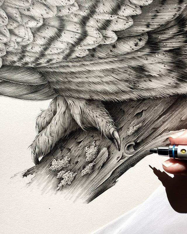 Talons, bark and lichen have been the order of play today... 🧐 ⠀⠀⠀⠀⠀⠀⠀⠀⠀ ⠀⠀⠀⠀⠀⠀⠀⠀⠀ ⠀⠀⠀⠀⠀⠀⠀⠀⠀ ⠀⠀⠀⠀⠀⠀⠀⠀⠀ #details #lostinthedetails #talons #owl #birdsofprey #bird #birdart #birdnerd #birdstagram #igbirds #feather #feather_perfection #calledtobecreative #kerryjane #dowhatyoulove #artoftheday #gallery #makearteveryday #inthestudio #creative #instaart #creativeprocess #artwork #wip #art #artist #creativityfound #inspiration #artprocess #artstudio