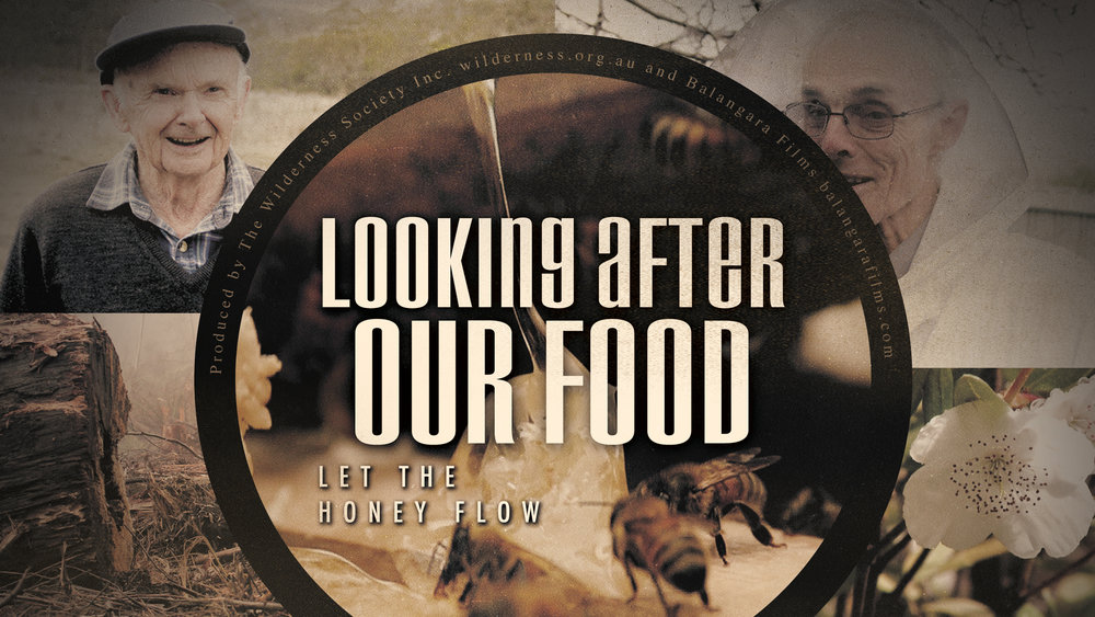 Looking After Our Food - Let the honey flow
