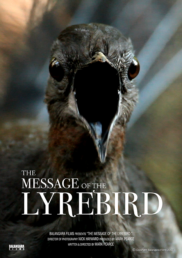 Message of the Lyrebird