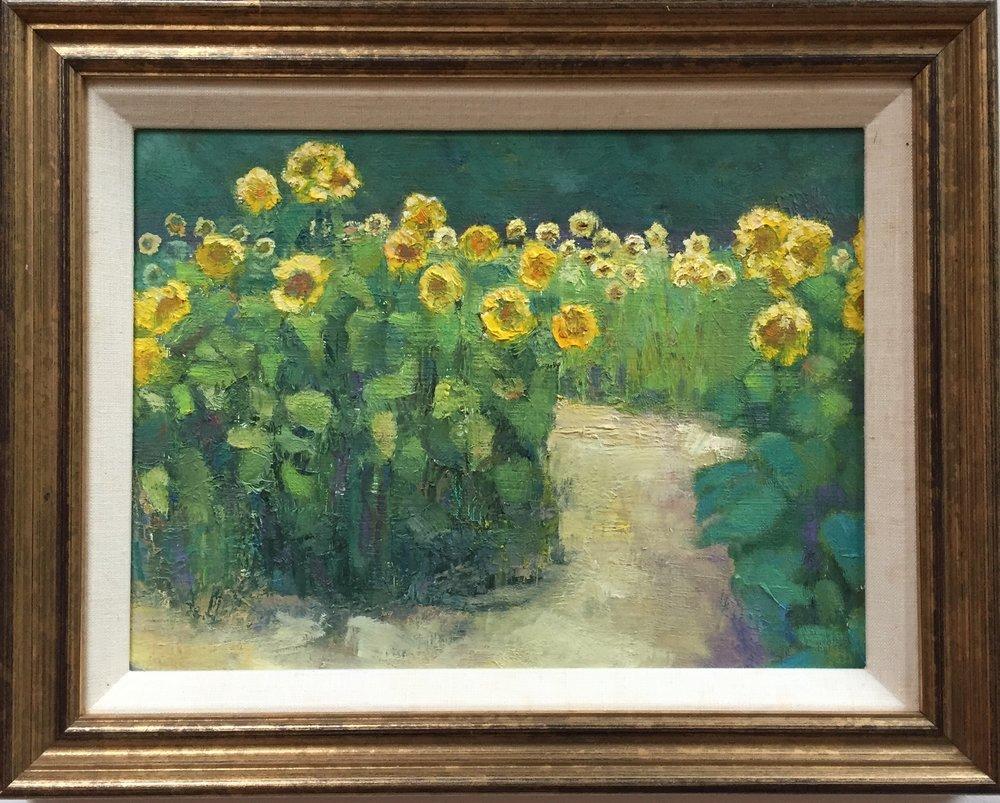 Sunflowers at Coppal Farm, Lee NH