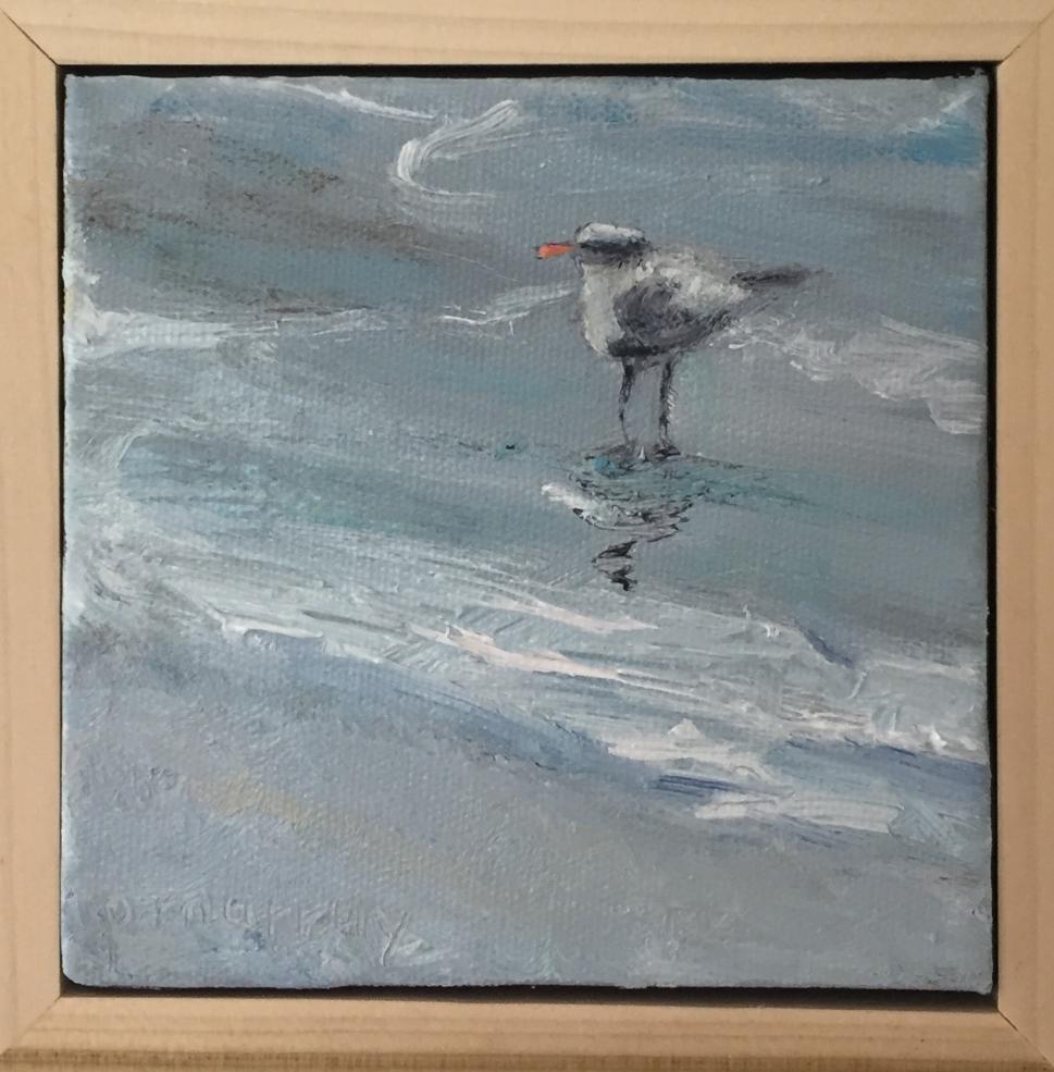 The Lone Tern