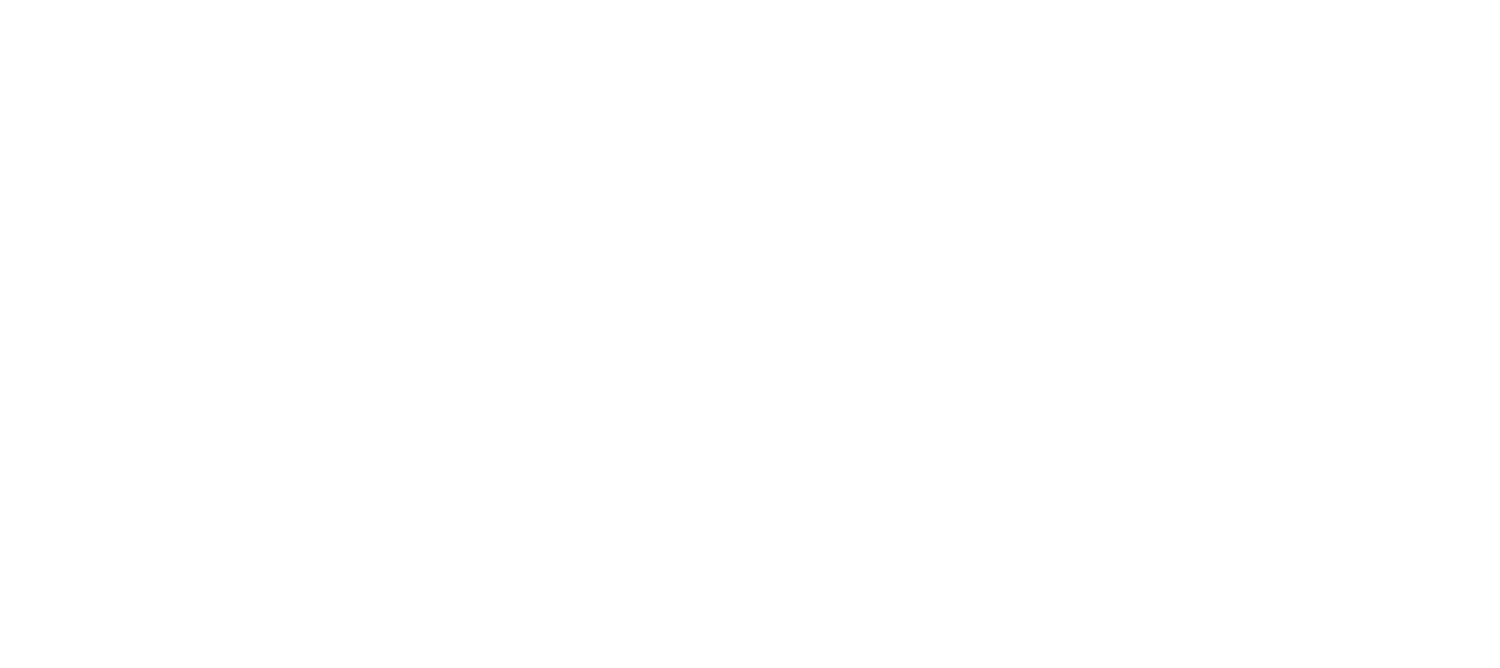 APR Engines & Automotive