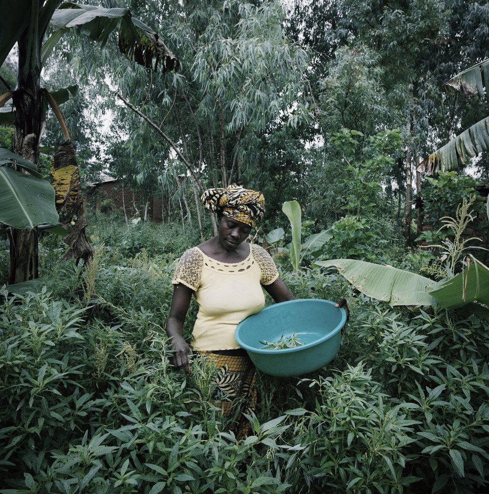 Burundi+6x6+032hr.jpg