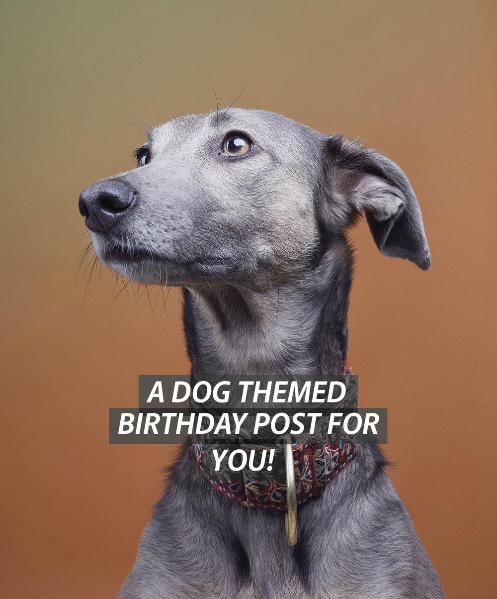 DOG TEXT.jpg