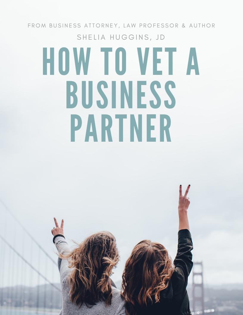 vet partner book cover.jpg