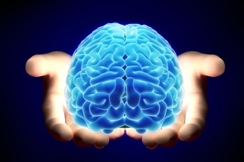 brain-article.jpg
