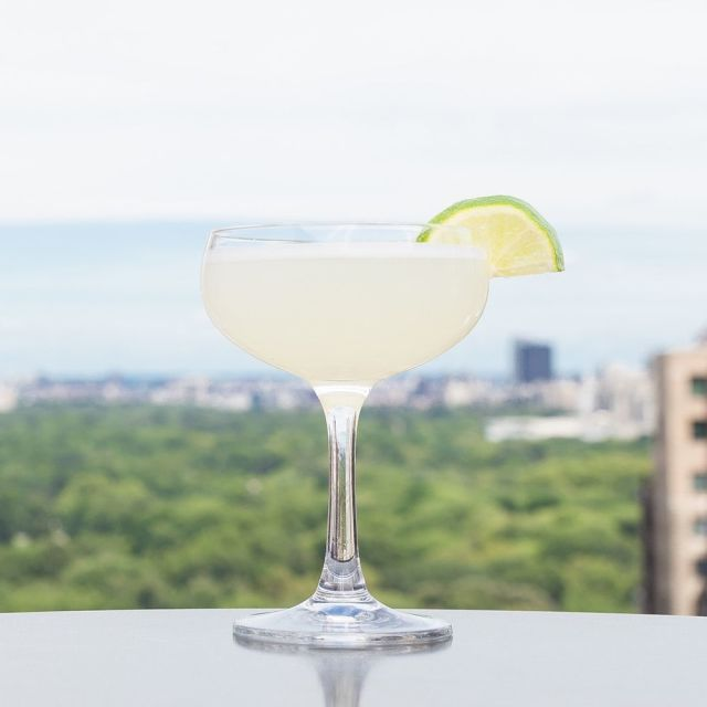 square-1439914805-vodka-drinks-gimlet.jpg