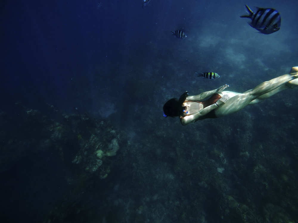 The shipwrecks of Coron, one of the most amazing thing I've seen from this trip.
