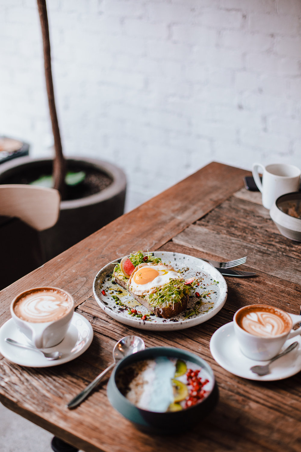 Chia pudding//latte and cappuccino//avocado on toast