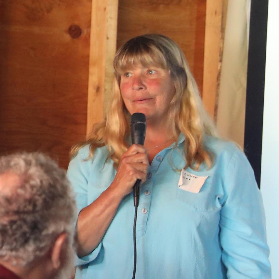 Polar swimmer Lynn Cox