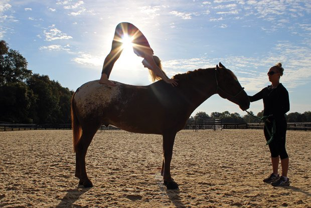 Horseback-Yoga.jpg