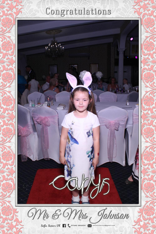 Cute bunny.jpg