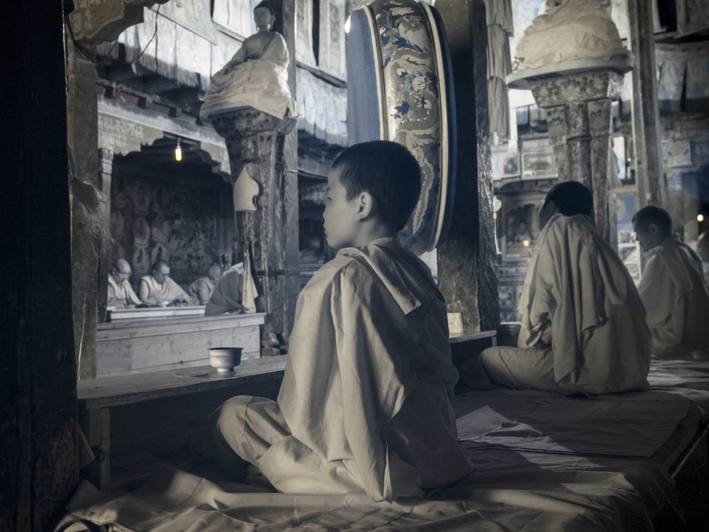 """Young Monk in Profile"""