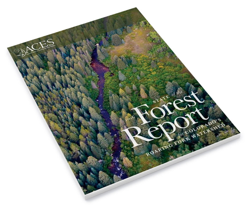 Forest-Report-Cover.jpg