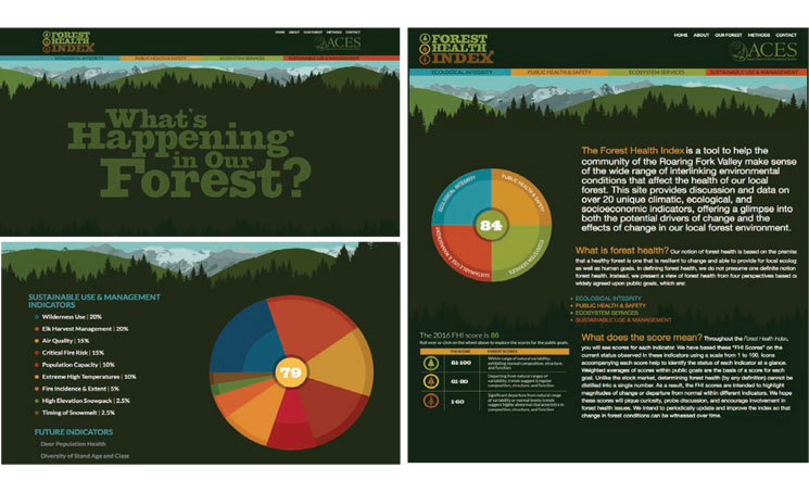 kvd-branding-forest-health-index-.jpg
