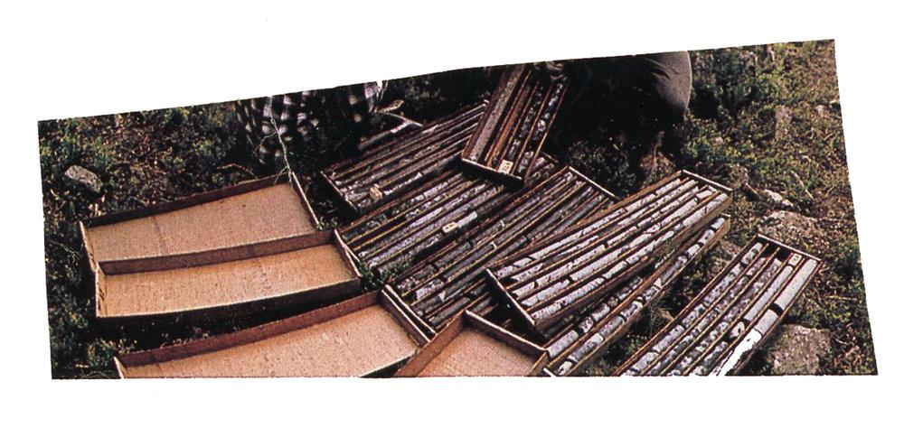 core samples.jpg