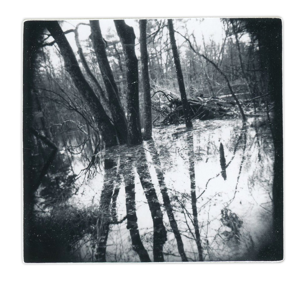 Untitled (Unique Polaroid print mounted on cardstock)