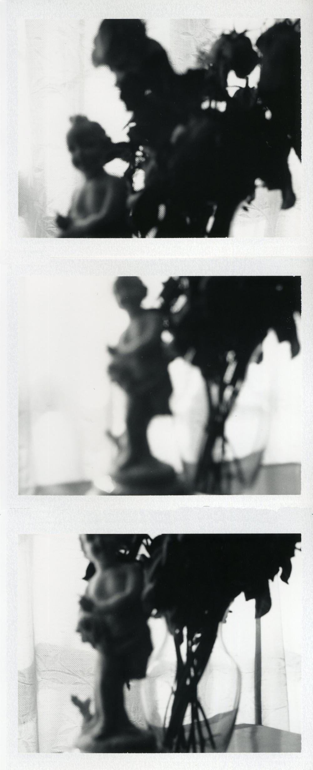Cupids & Roses, 2009 (3 Polaroids)
