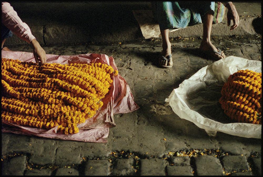Calcutta-33.jpg