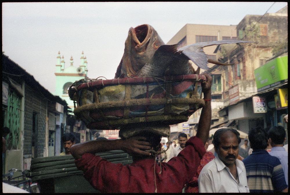 Calcutta-80.jpg