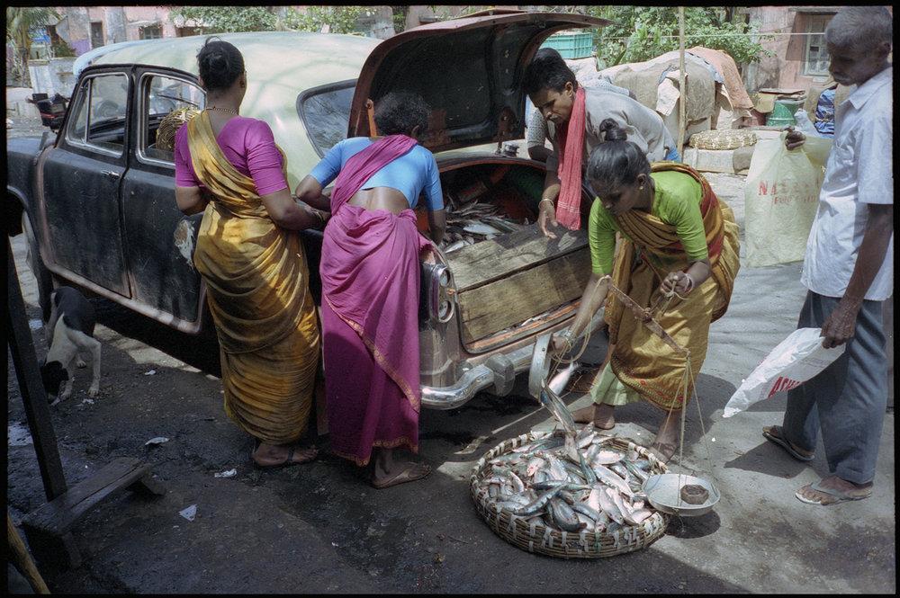 Calcutta-85.jpg