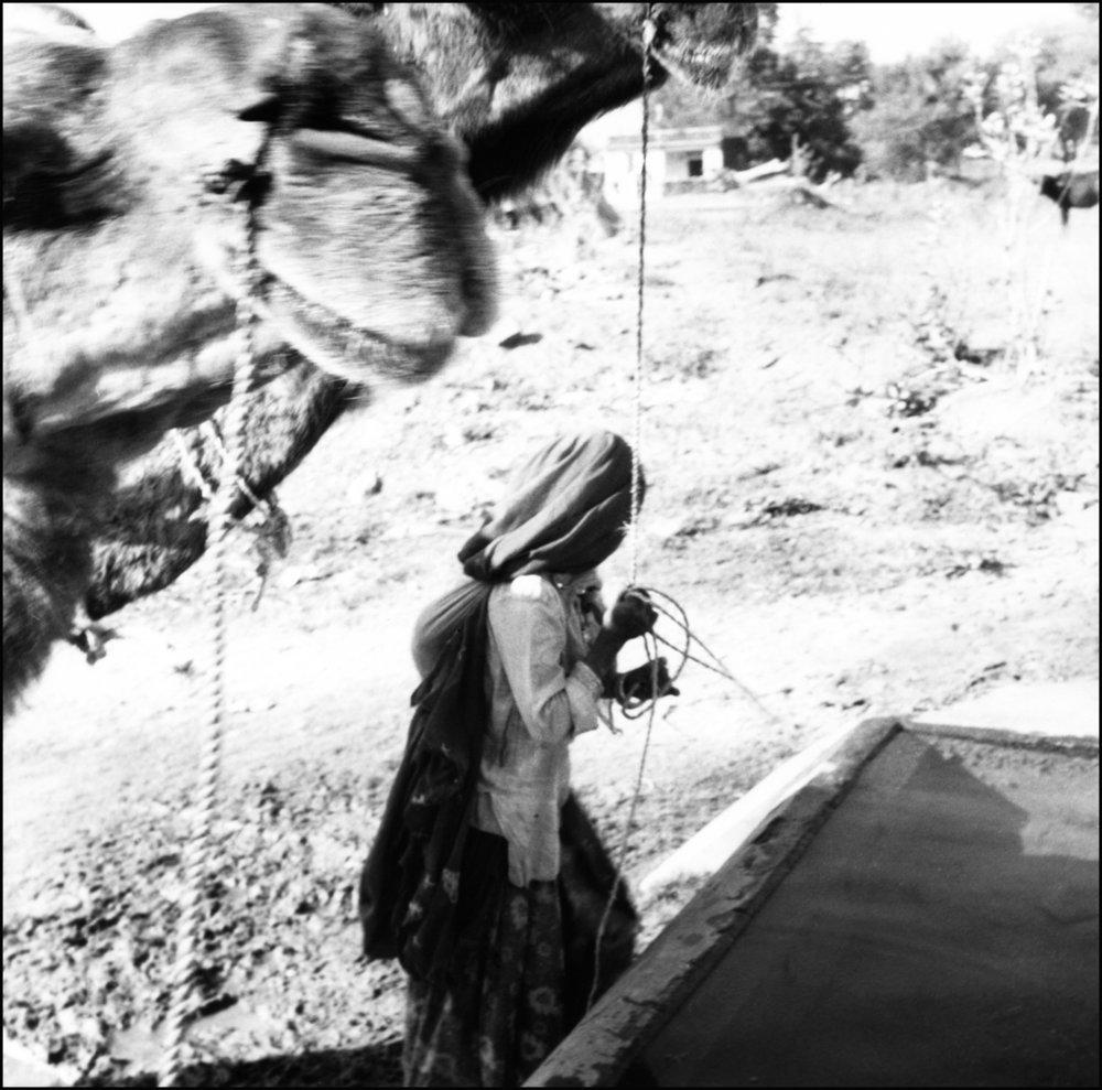 gitans Inde 07.jpg