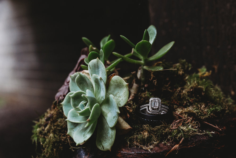 succulent rings southern oregon wedding photographer