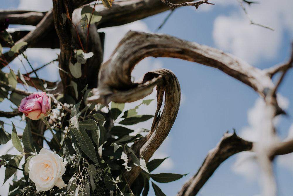Dallas-wedding-photographer-thistle-springs-ranch-cleburne-texas-25