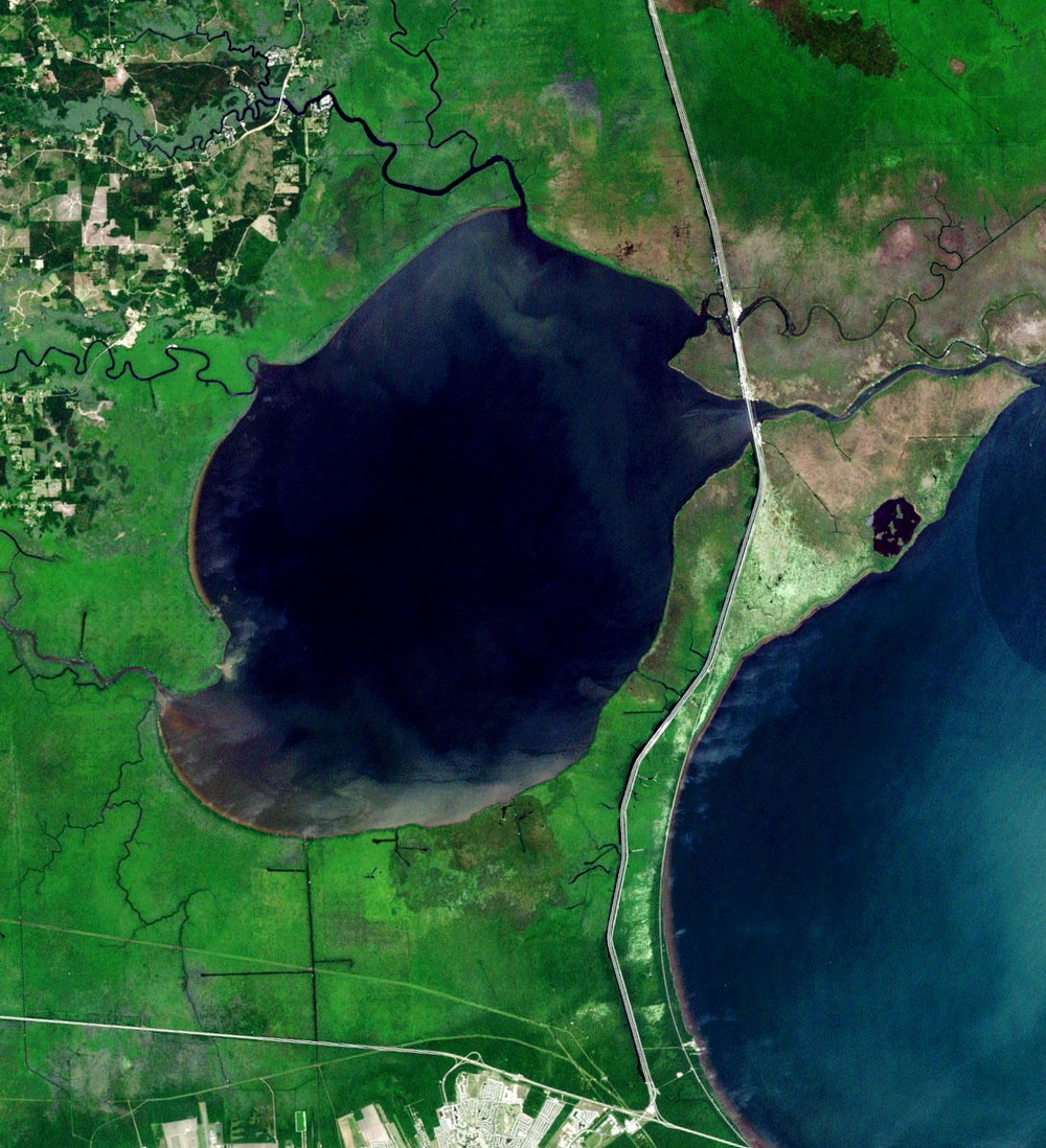 Landsat image of Lake Maurepas, Louisiana. Image credit: NASA.