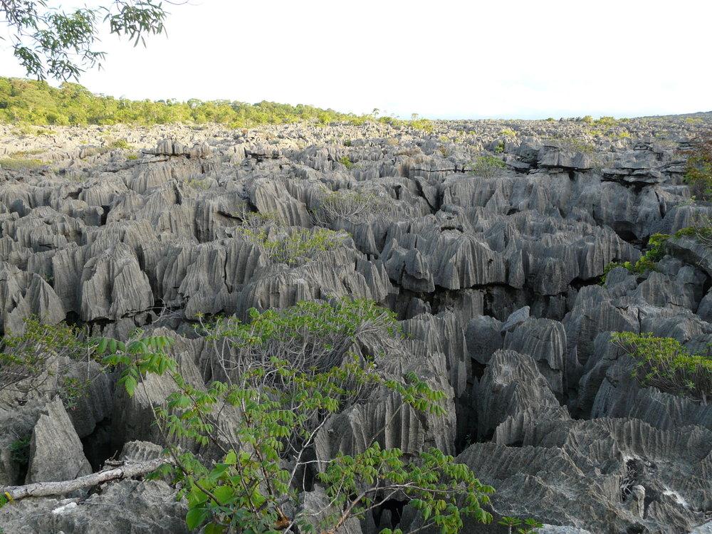 Tsingy in Ankarana National Park. Photo by Sara Ruane.