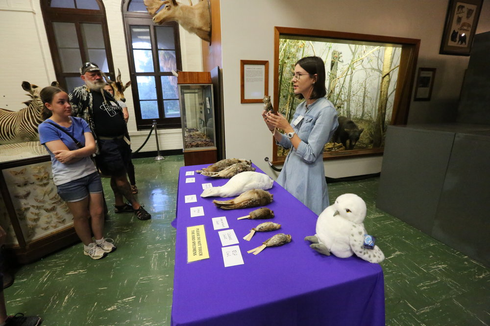 Jessie Salter talks to museum visitors during Night at the Museum - Owls! Image: Paige Jarreau.