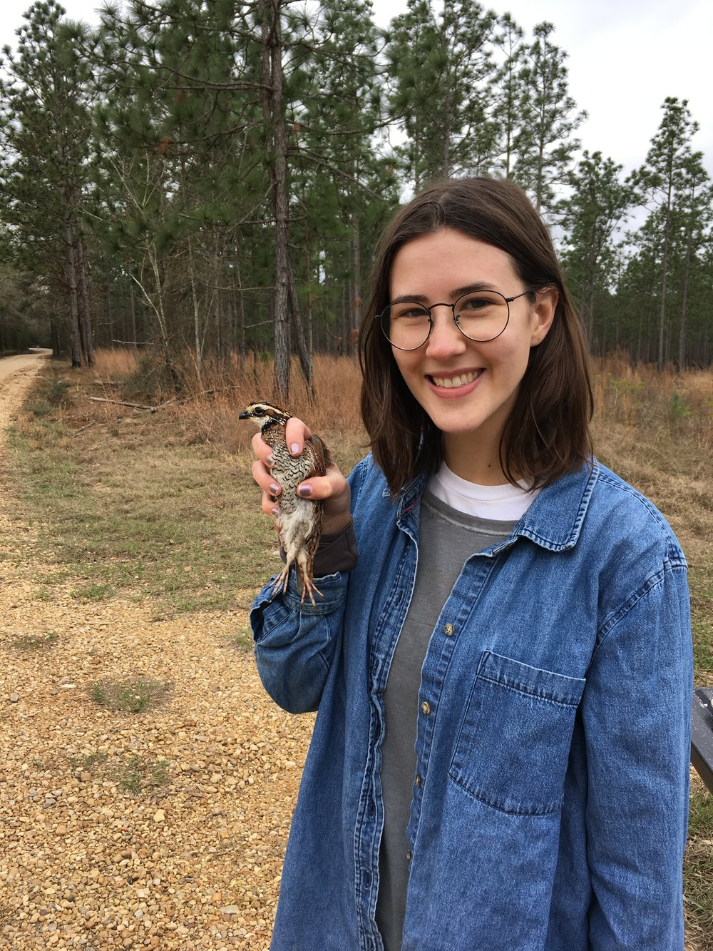"Jessie with a male Northern Bobwhite in Sandy Hollow WMA in Tangipahoa Parish in February. ""I was working with LDWF and local hunters to collect a female bobwhite for whole-genome sequencing. We are about six weeks away from having that high-quality reference genome in-hand, which will be an indispensable resource for my dissertation."" - Jessie Salter."
