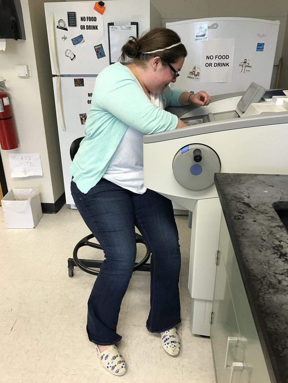 Preparing fish brain samples