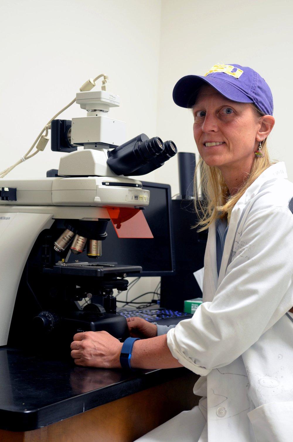 Karen Maruska in the Lab.