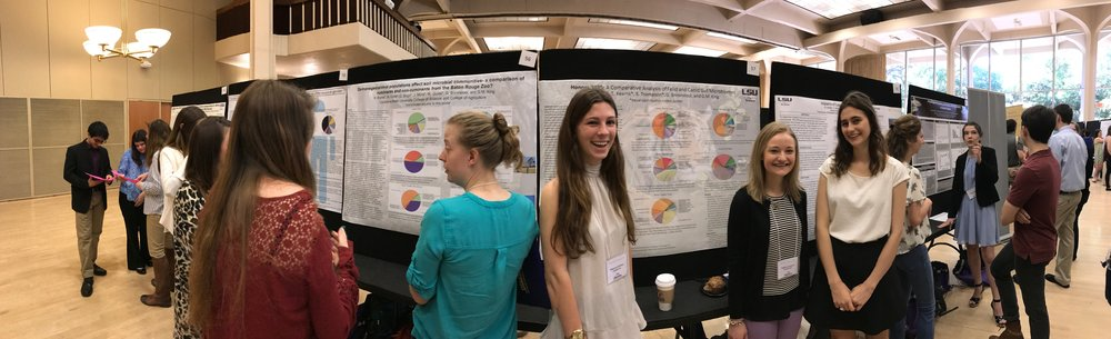 A panorama of Honors 3035 students presenting at LSU Discover Day 2017. Photo by Gary King.