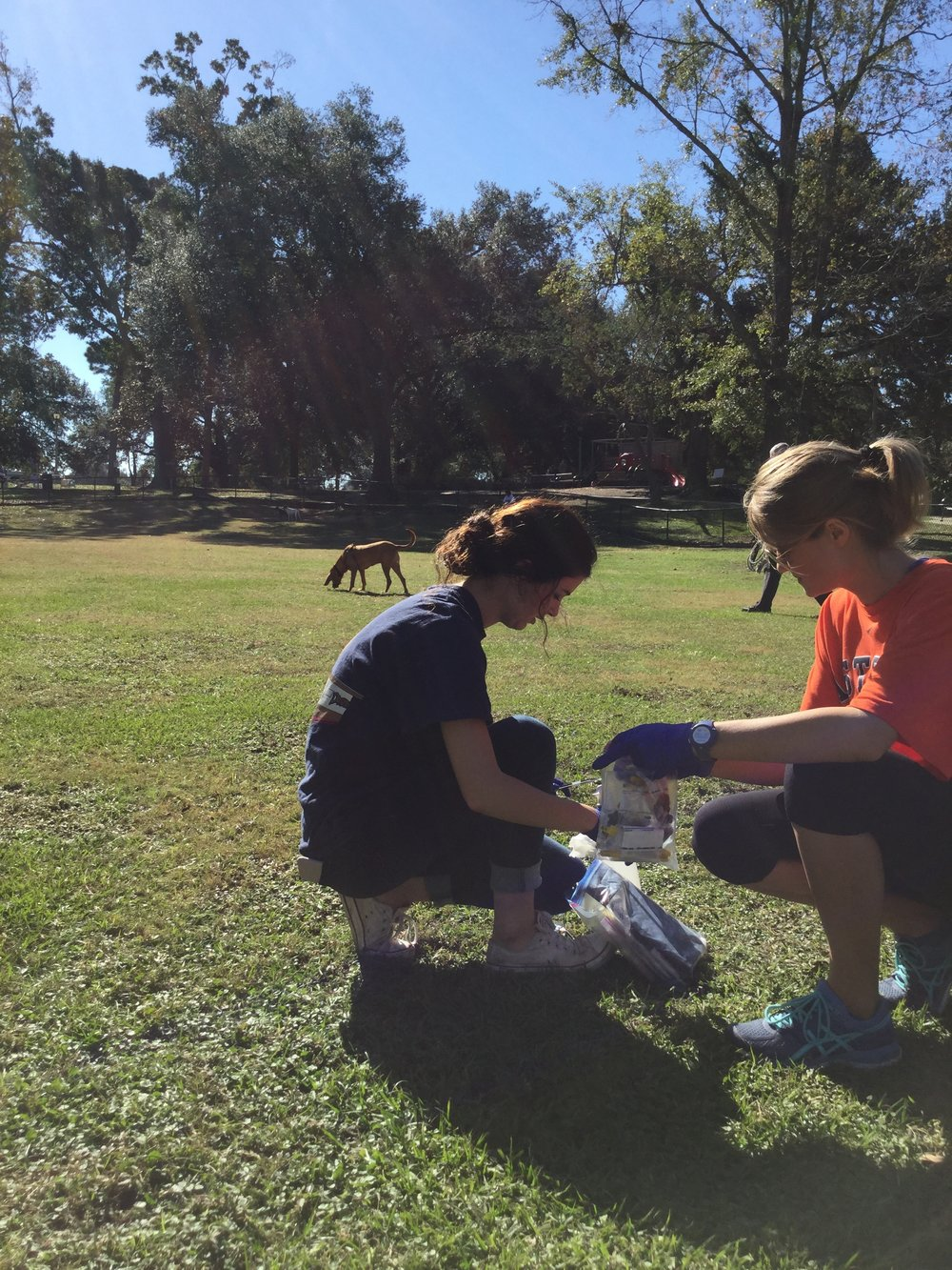 Microbiology students collect fecal samples from Cane's dog park. What kinds of microbes are living in our dogs' guts? Photo by Gary King.