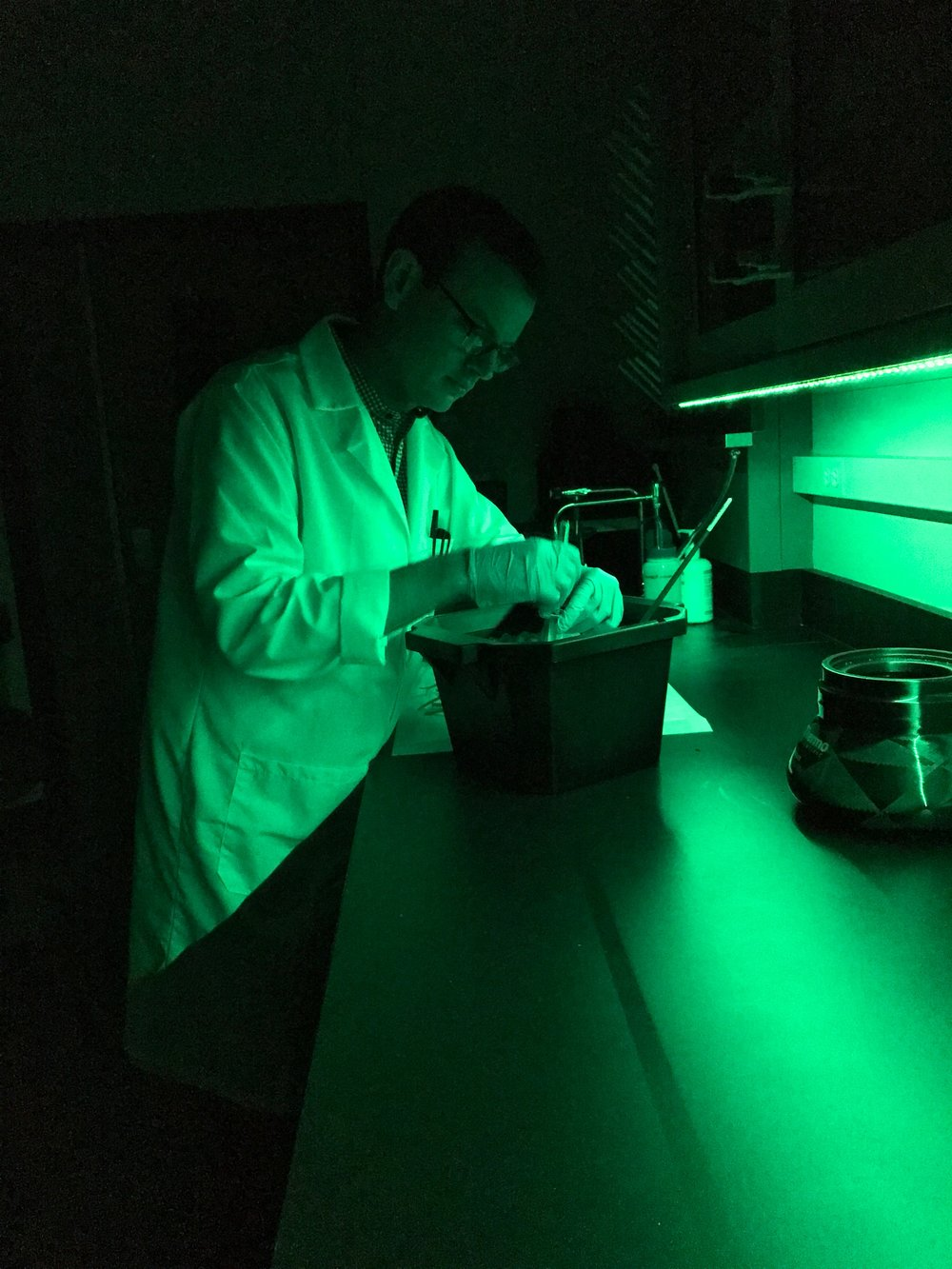 David Vinyard working in his photosynthesis lab - where working in the dark is doing good science! Credit: David Vinyard.
