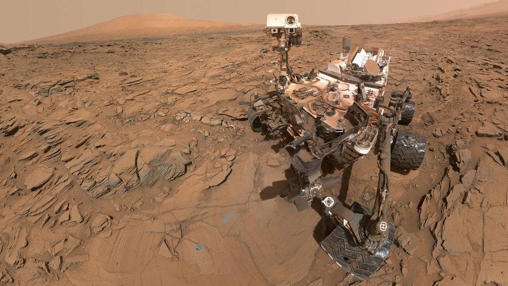 Martian selfie! Credit:NASA/JPL-Caltech/MSSS.