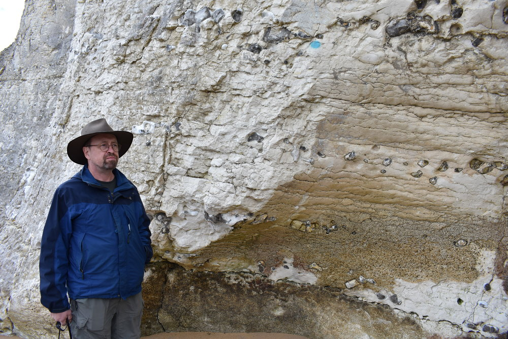 Dr. Peter Clift stands by the cliffs. The chert forms individual nodules occurring in rows.