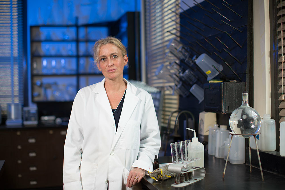 Sophie Warny in the lab at LSU. Credit: LSU / Eddy Perez.