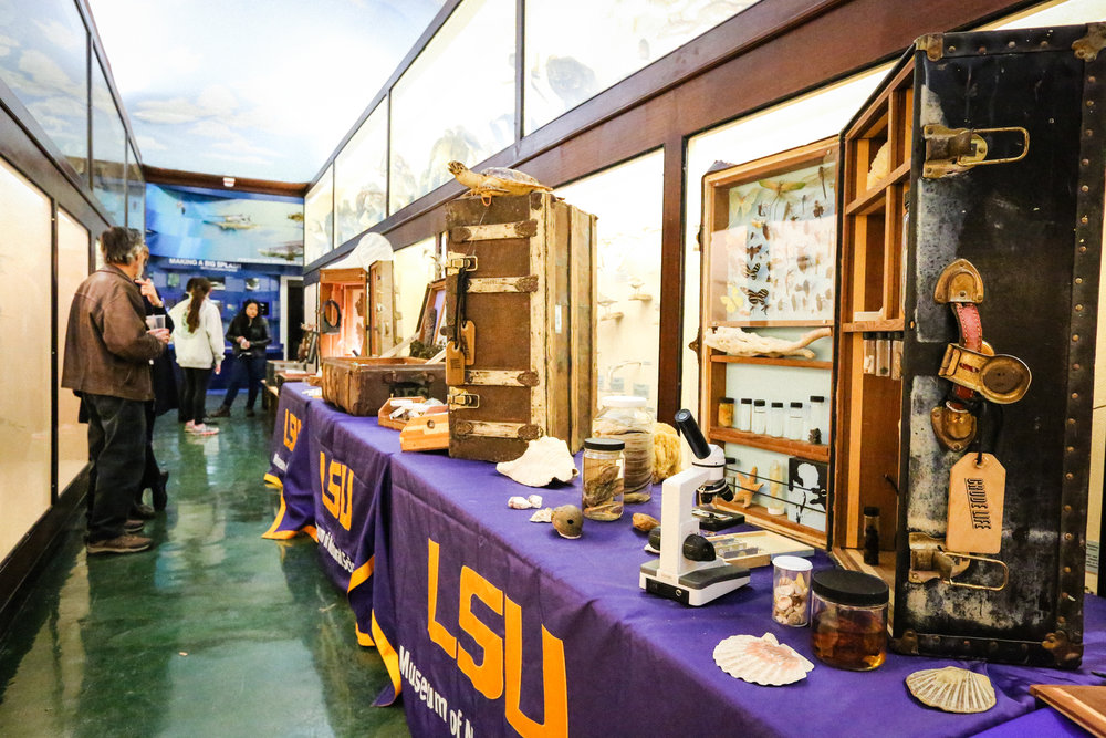 Crude Life portable science museum visits the LSU Museum of Natural Science. Photo by Paige Jarreau.
