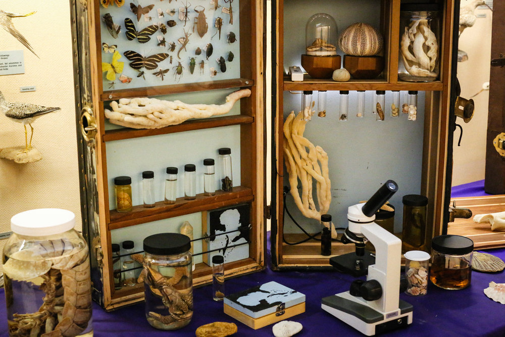 Crude Life's microscope exhibit is interactive by design