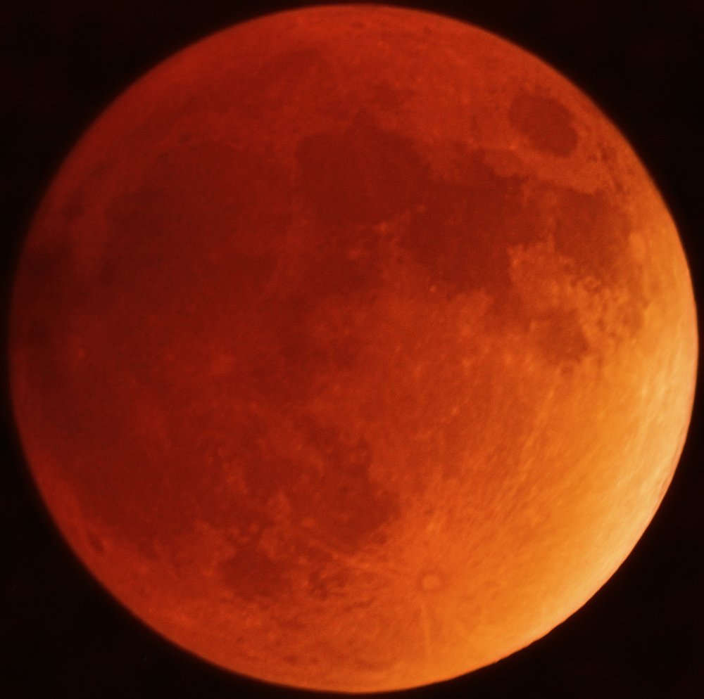 Lunar eclipse on the night of January 31 as seen from Baton Rouge, LA. Photo Credit: Connor Matherne, LSU.