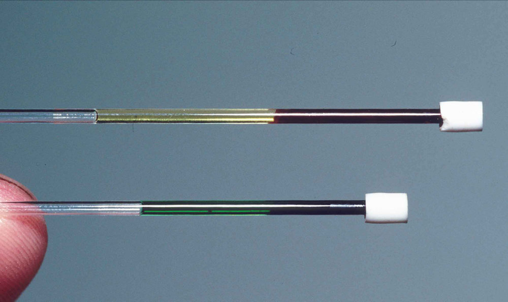 In this image, one tube (top) shows a blood sample from a regular red-blooded lizard from New Guinea ( Lamprolepis smaragdina ). The other tube (bottom) reveals the bright green blood of  Prasinohaema . The bile in this blood could kill other species, but  Prasinohaema  handles it just fine. Credit: Chris Austin, LSU.""