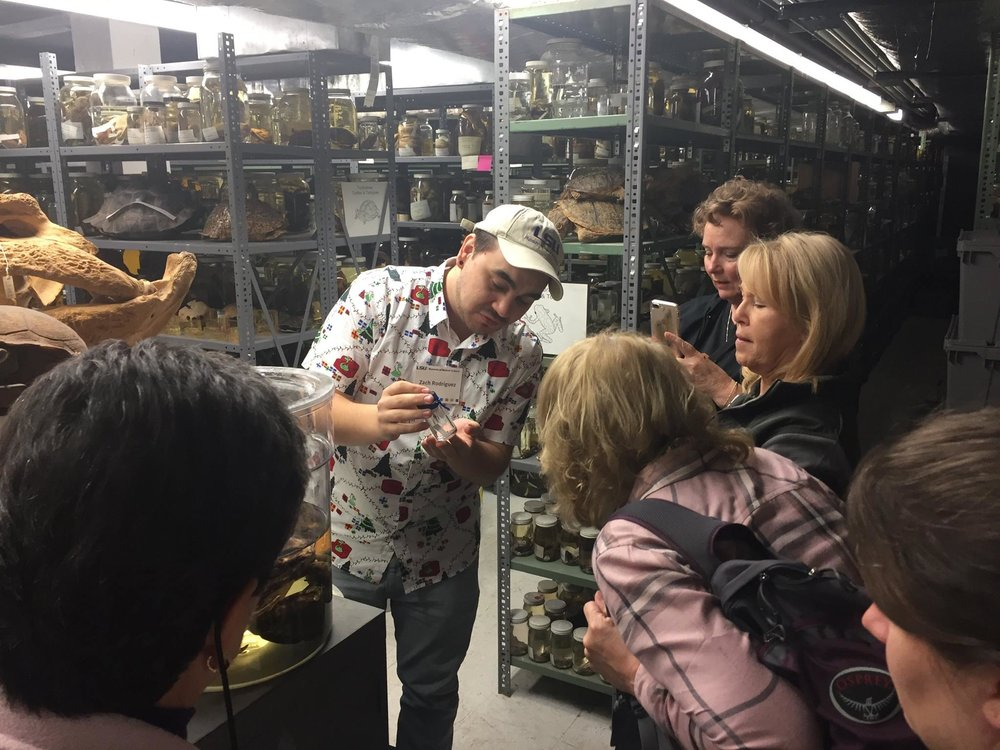 Zach engages in science outreach at the LSU Museum of Natural Science. Photo credit:  Zachary Rodriguez.